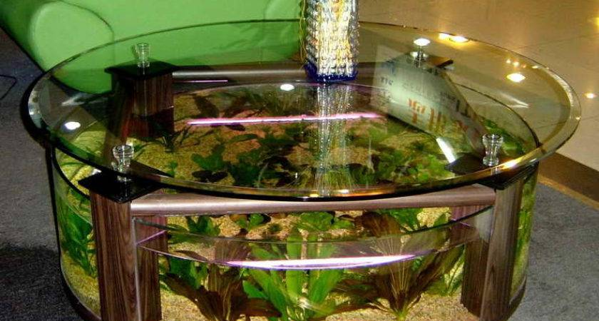 Aquarium Decoration Ideas Home Design