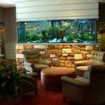 Aquarium Patterns Home Office Designing