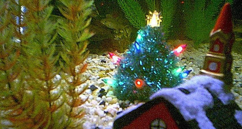 Archive Christmas Fish Brother Richard Made