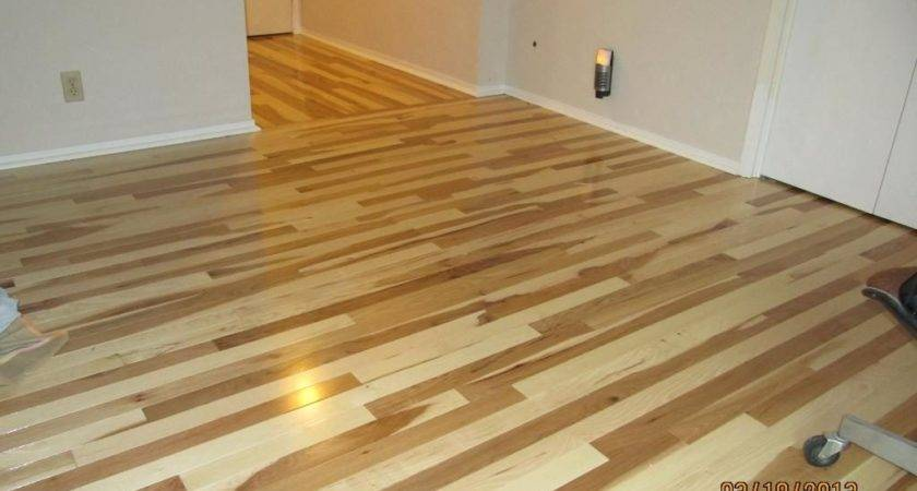 Bellawood Flooring Houses Ideas Blogule