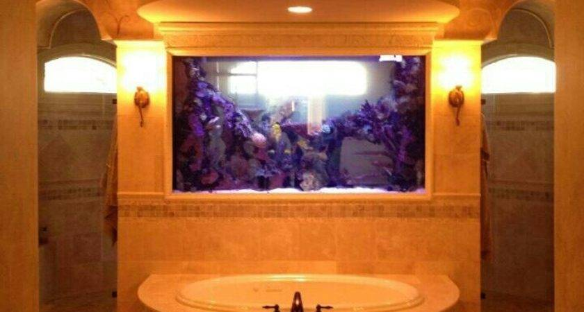 Best Custom Aquariums Ideas Pinterest Aquarium
