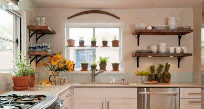 Best Kitchen Plants Decorate
