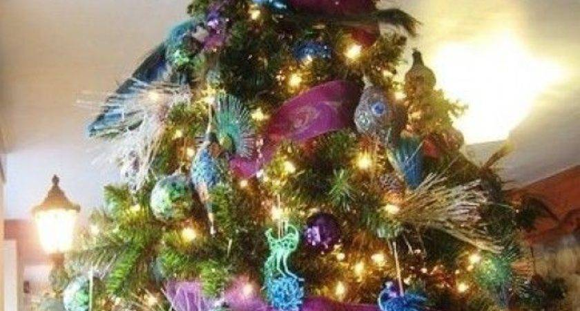 Best Peacock Christmas Pinterest