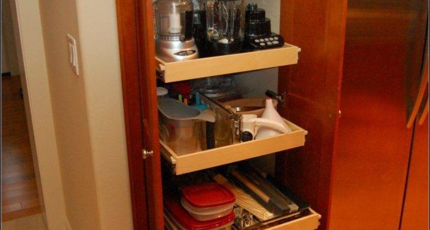 Built Pantry Cabinets Ideas Home Design