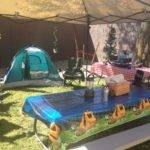 Busy Broad Camping Themed Birthday Party Decorations