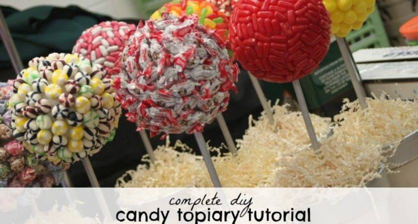 Complete Diy Candy Topiary Tutorial Bar