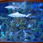 Concept Design Home Aquarium Sharks Photos