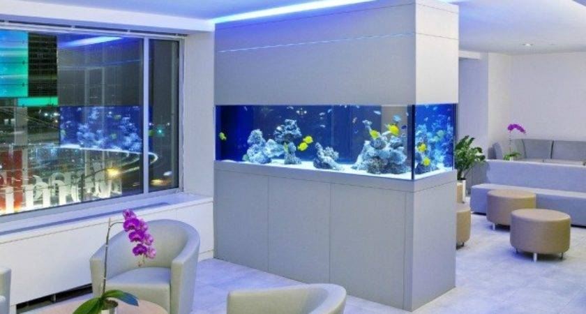 Cool Fish Tanks Your Office