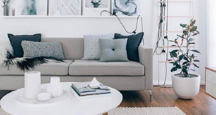 Cool Grey Couches Living Room Light Decorating Ideas