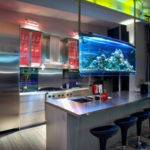 Cool Home Aquariums Completely Helping