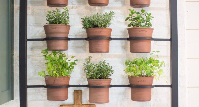 Decorating Our Homes Plants Interior Design Explained