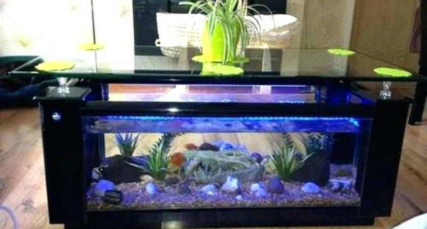 Dining Room Table Fish Tank