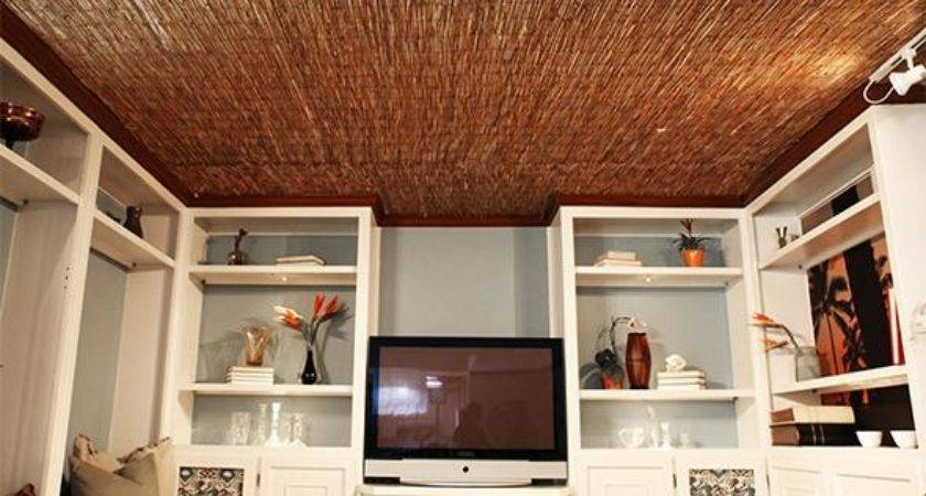 Diy Reed Fence Ceiling Everyday