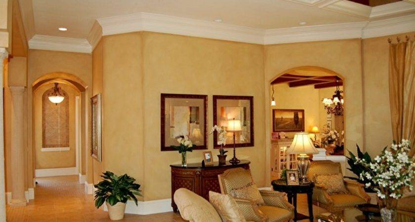 Faux Finish Mediterranean Living Room Tampa