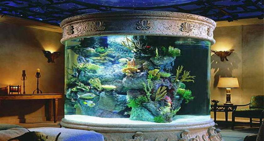 Fish Tank Decoration Ideas Decorating