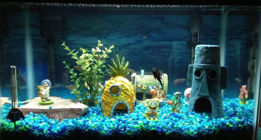 Fish Tank Decorations Simple Guide Aquariphiles