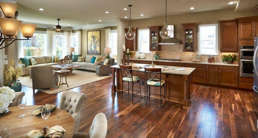 Awesome Galley Kitchen Open To Living Room Pictures Homes Decor