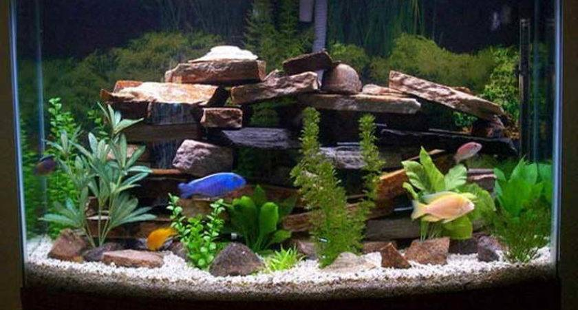 Home Accessories Fish Tank Decor Ideas Awesome