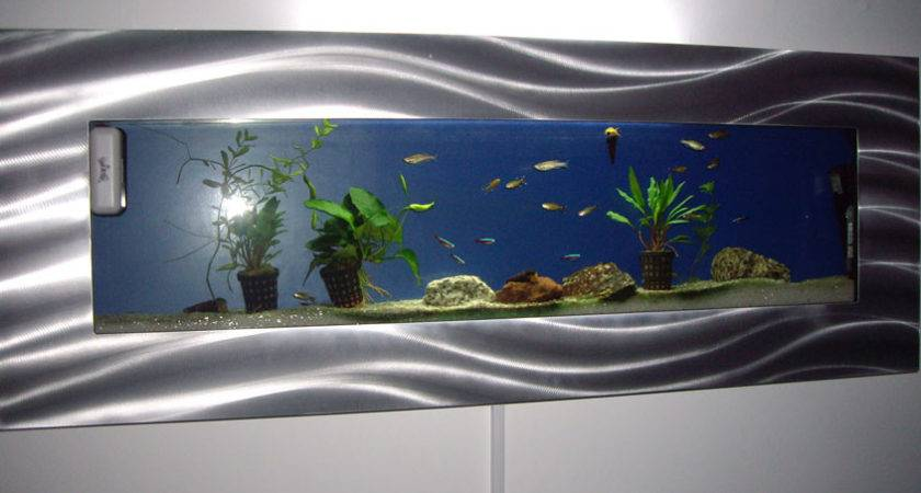 Igallery Wall Hanging Fish Tanks User Photos