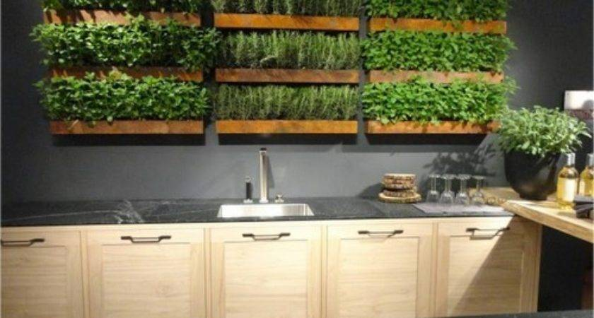 Kitchen Herb Garden Interior Designs Home