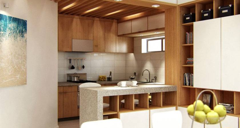 Kitchen Living Room Divider Ideas Home Combo