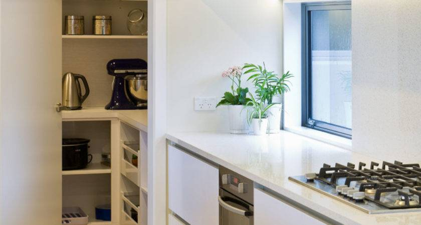 Kitchen Pantry Ideas Modern Contemporary Cabinet