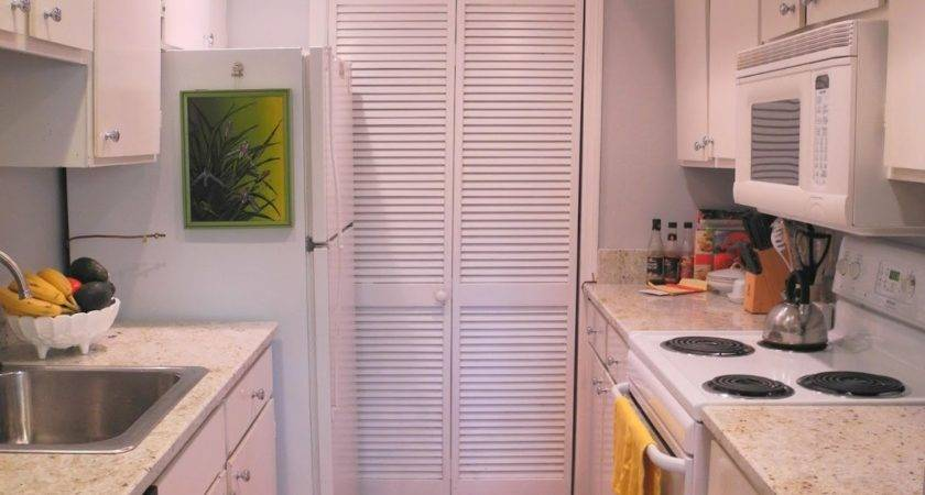 Kitchen Style Small Galley Designs