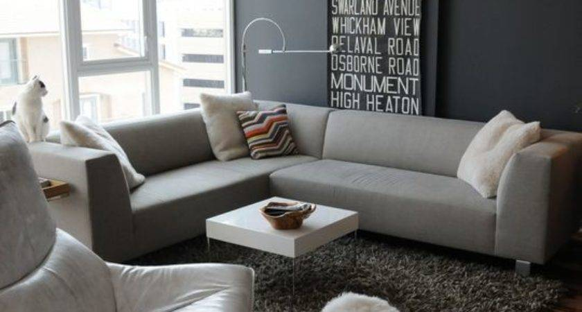 Modern Living Room Grey Color Dands