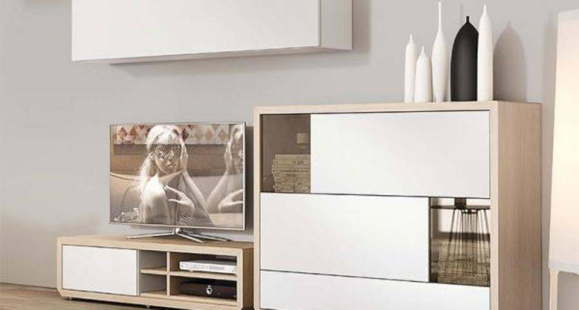 Modern Living Room Natural Wall Storage System