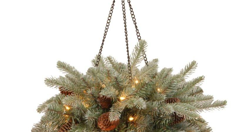 National Tree Frosted Arctic Spruce Hanging Basket