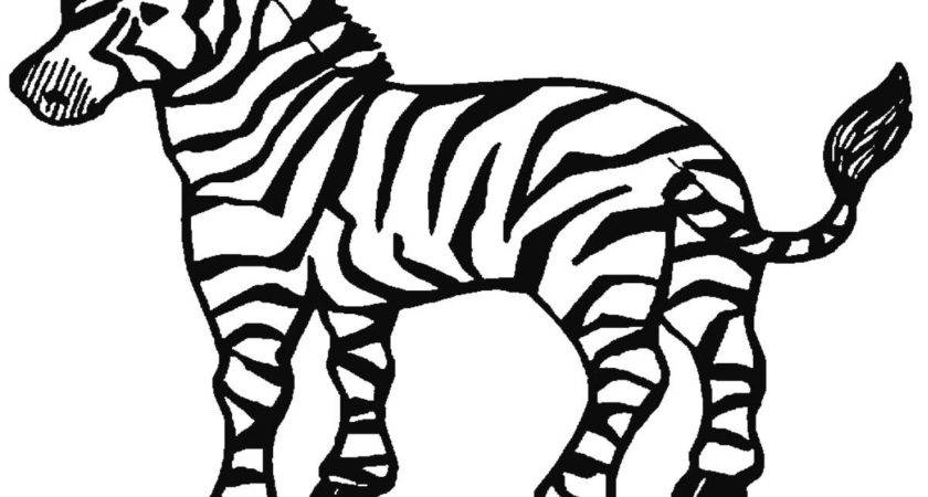 Printable Zebra Coloring Pages Kids