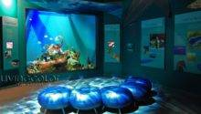 Public Aquariums Living Color