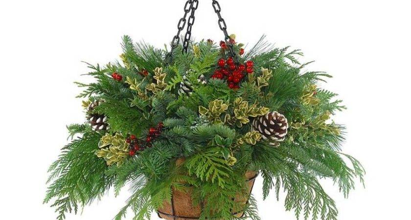 Shop Fresh Cut Christmas Hanging Basket Pinecones