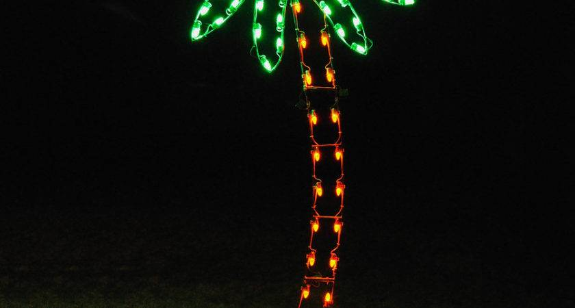 Shop Holiday Lighting Specialists Palm Tree