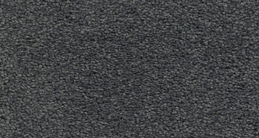 Shop Stainmaster Trusoft Chimney Rock Gray Silver Textured