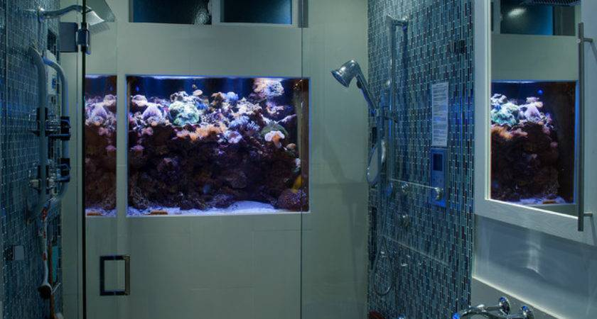 Shower Wall Custom Aquarium Installation