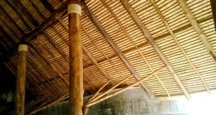 Thatch Roof Ceilings Ceiling Water Reed Grass