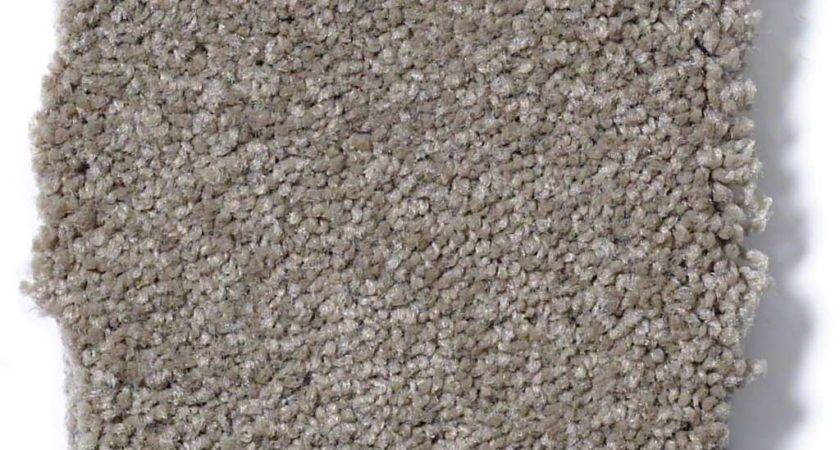 Timeless Appeal Chinchilla Carpet