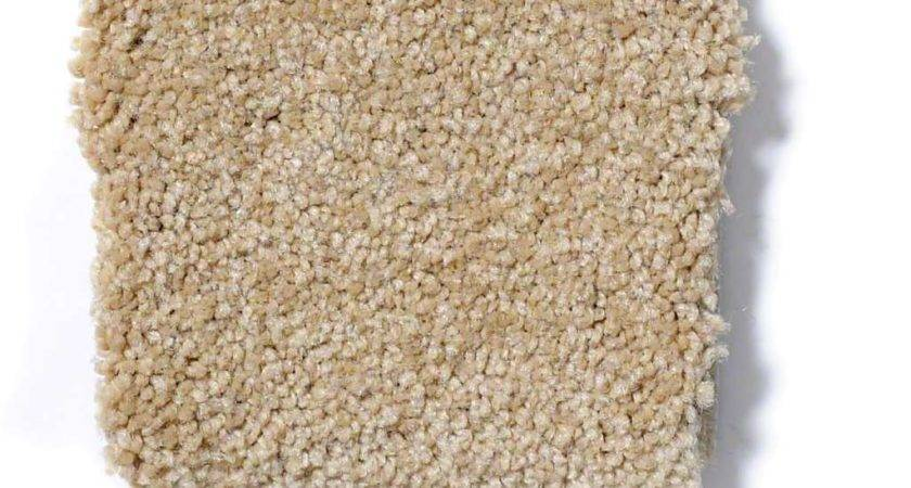 Timeless Appeal Cornfield Carpet Carpeting