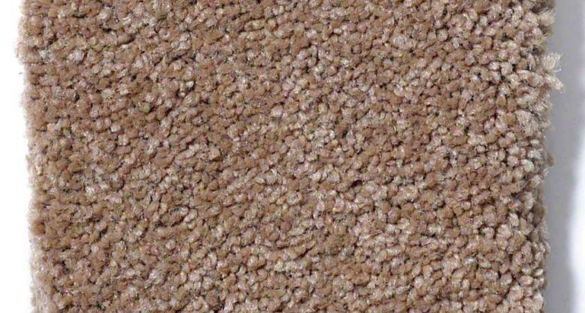 Timeless Appeal Muffin Carpet Carpeting