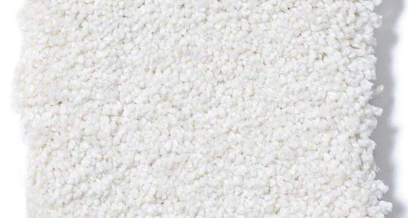 Timeless Appeal Vanilla Carpet Carpeting