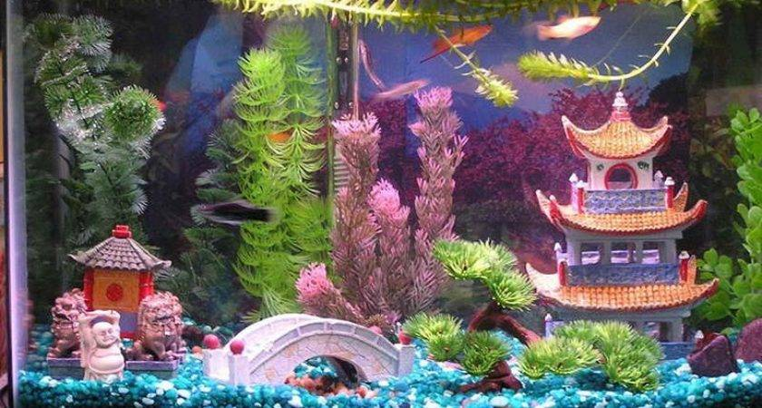 Tips Get Cool Fish Tanks