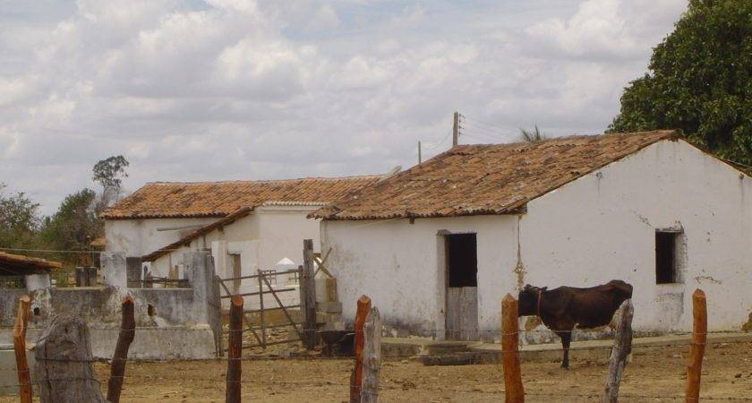 Traditional House Stable Sertaoe Rio