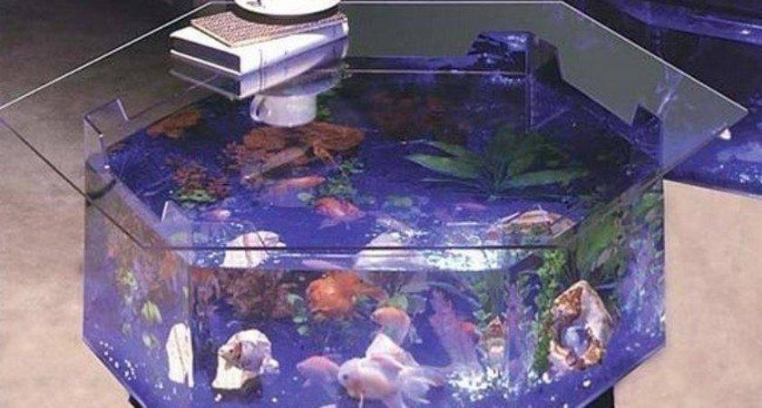 Transform Way Your Home Looks Using Fish Tank