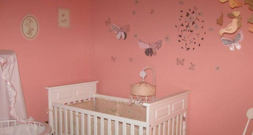 Unique Baby Girl Nursery Insidehomedesign