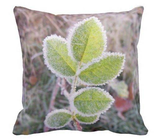 Unique Cushion Featuring Frosty Green Leaves Zazzle